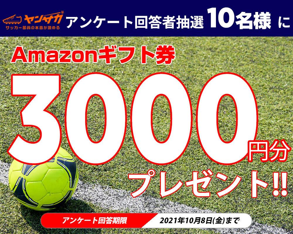 【アンケート実施中!】回答者抽選10名様にAmazonギフト券3000円分が当たる!